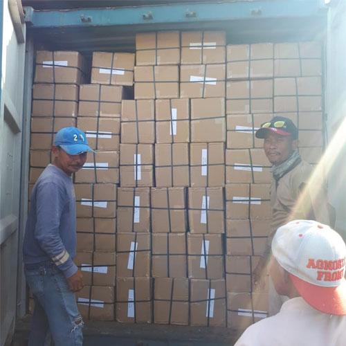 ekspedisi kontainer jakarta makassar